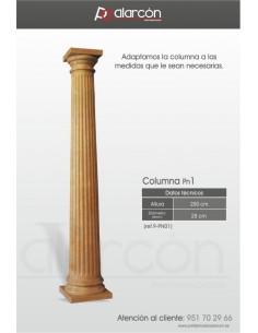 Columna PN1