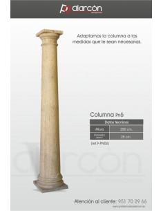 Columna PN6