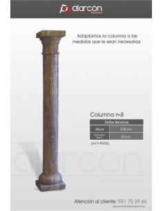 Columna PN8