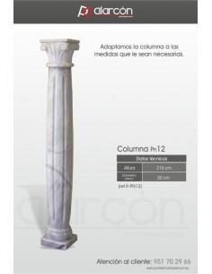 Columna PN12